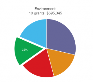 Environment pie graph