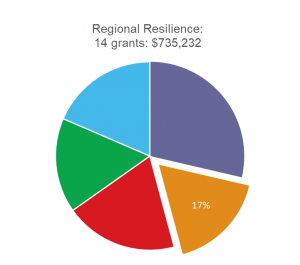 Regional resilience pie graph