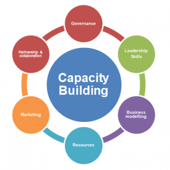 capacity building synonym